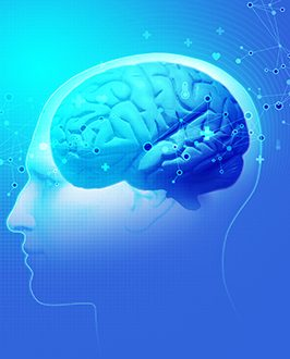 Brain & Habits