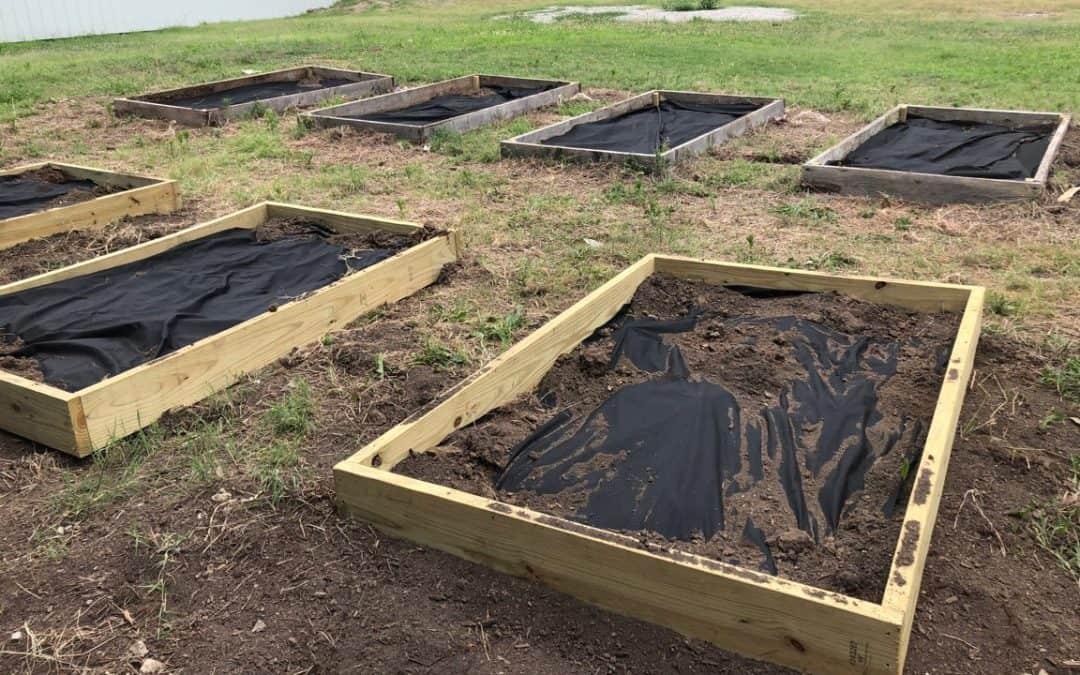 Help garden grow